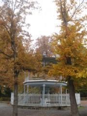 Slika perivoj u jesen