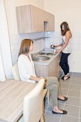 Apartman Ankin dvor kuhinja