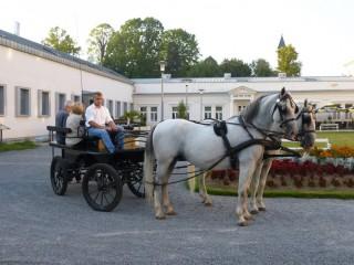 Slika kočije